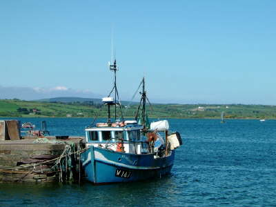 Fishing in Youghal, sea fishing, boat trips